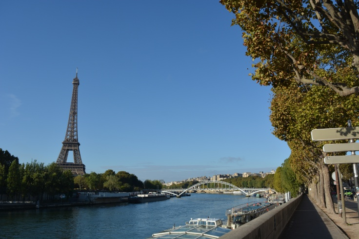 Seine River Overlooking Eiffel Tower