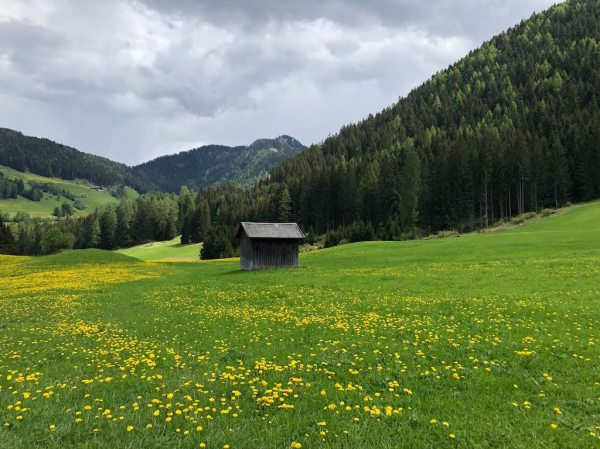 Beautiful South Tyrol