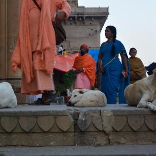 Ghat Trail in Varanasi