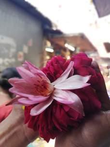 Shri Durga Temple